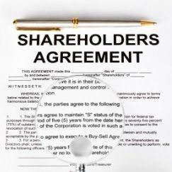 SHAREHOLDER AGREEMENTS